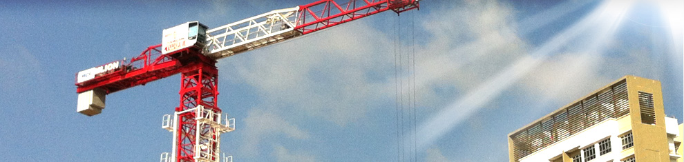 Tiong Woon Corporation Holding Ltd :: Tower Cranes
